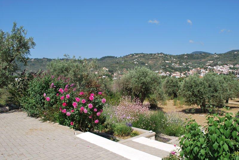 ENASTRON GUESTHOUSE nice view 5min from port-beach, location de vacances à Ville de Skopelos