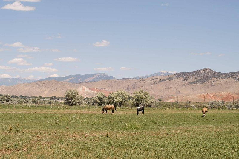 Salina is a pastoral paradise with many farms.