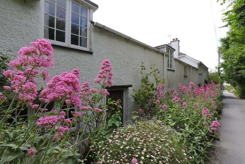 Cottage in Trebetherick close to Daymer Bay, holiday rental in Trebetherick