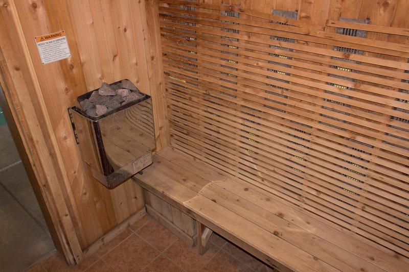 Wisconsin Dells Getaways Sauna # 307