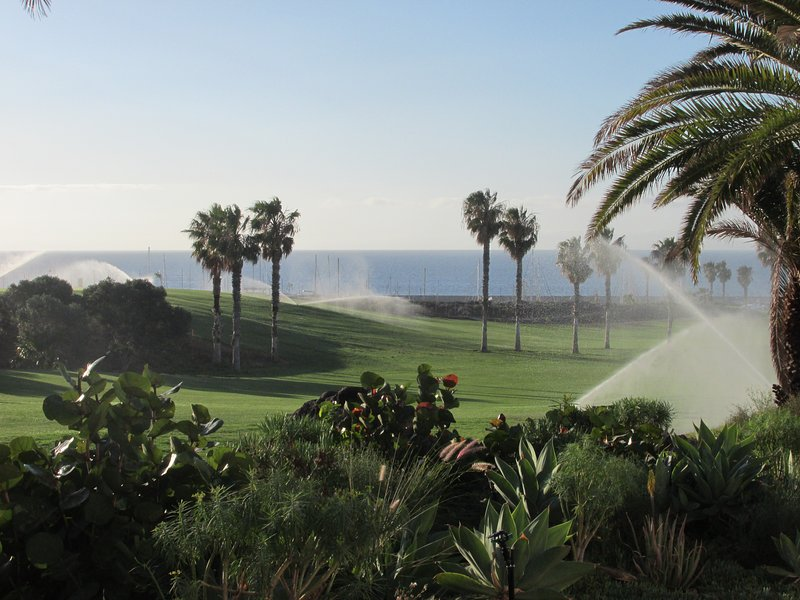 Amarilla Golf Course dall'appartamento