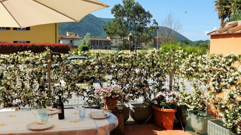 home with private garden in Lucca, holiday rental in San Macario in Piano