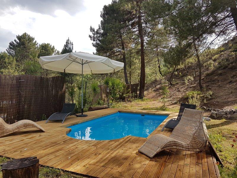 Piscina privada con deck de madera, rodeada de pinos