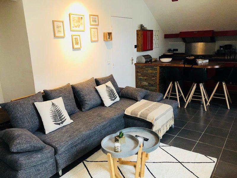 Superbe Appartement centre-ville de Bayonne, alquiler vacacional en Bayona