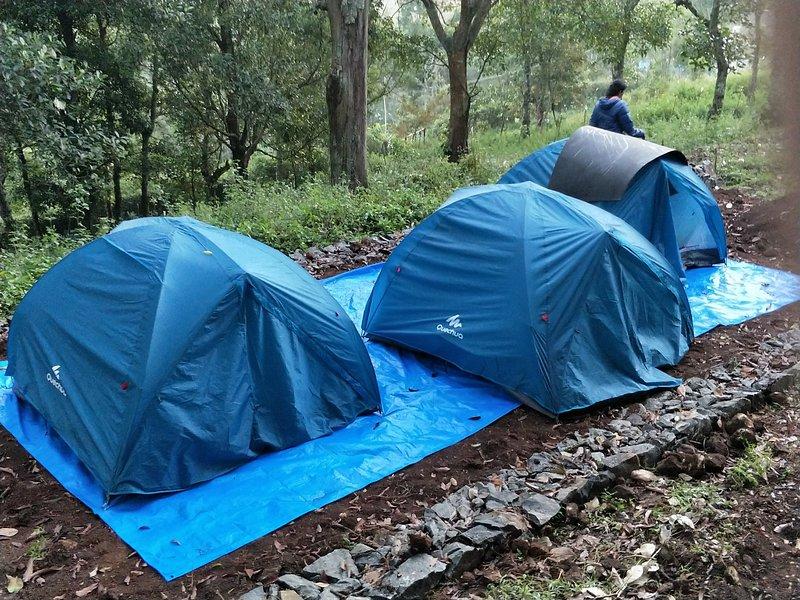Plumeria Eco Trails - Rent a Tent, holiday rental in Kodaikanal