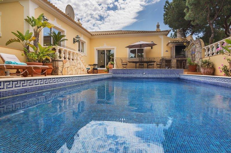 zonnig groot zwembad