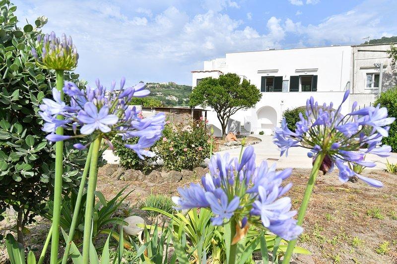 Giardino Fiorito, holiday rental in Barano d'Ischia