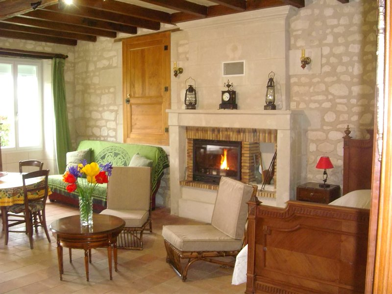 Nice house with terrace & Wifi, vacation rental in Berrie