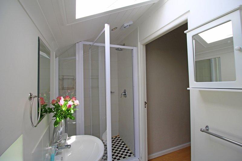 Baño de abajo que comprende ducha, inodoro y lavabo.