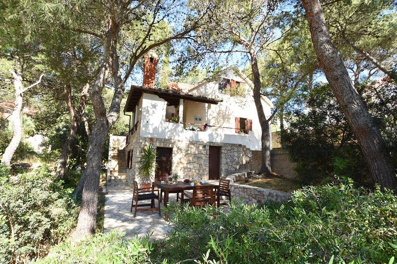Villa Thalassina - 20m to the sea, sleeps 6 -14 people (7 bedrooms), holiday rental in Milna