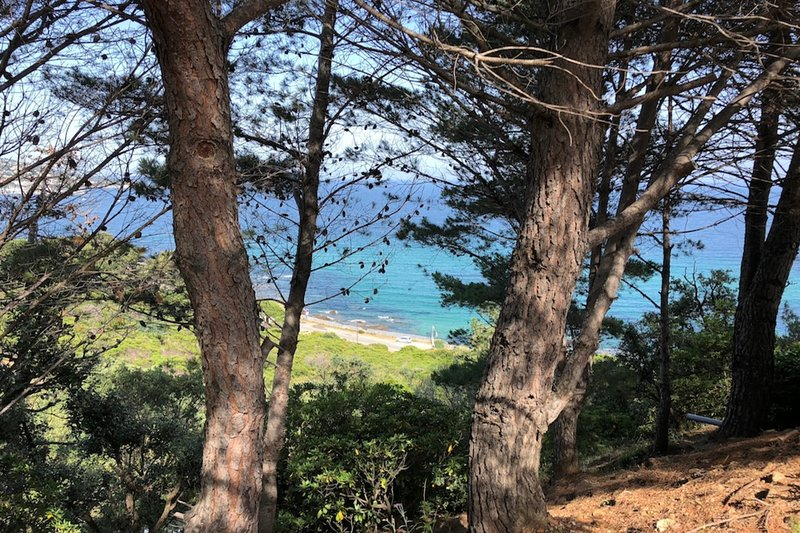 Lovely studio 100m from the beach, holiday rental in Sainte-Maxime