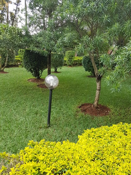 One Bedroom Cottage, holiday rental in Nairobi