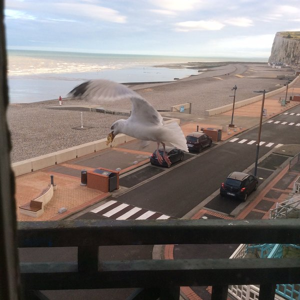 La Falaise, vacation rental in Mers-les-Bains