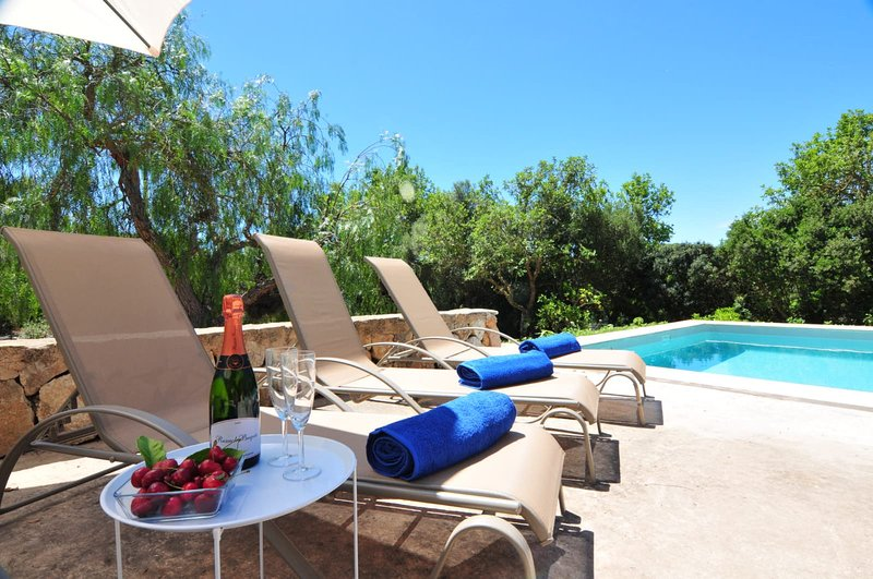 Finca Son Torró-Landviews-Pool-BBQ-Ideal Family, holiday rental in Sant Llorenç des Cardassar