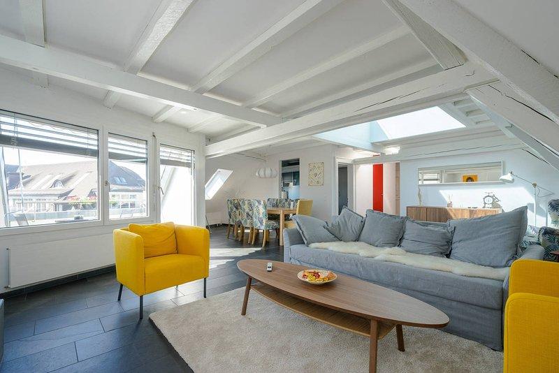 Big charming flat at zurich main station, holiday rental in Regensberg