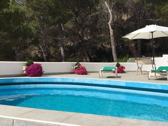 The pool Terrace from another angle showing the flowers.
