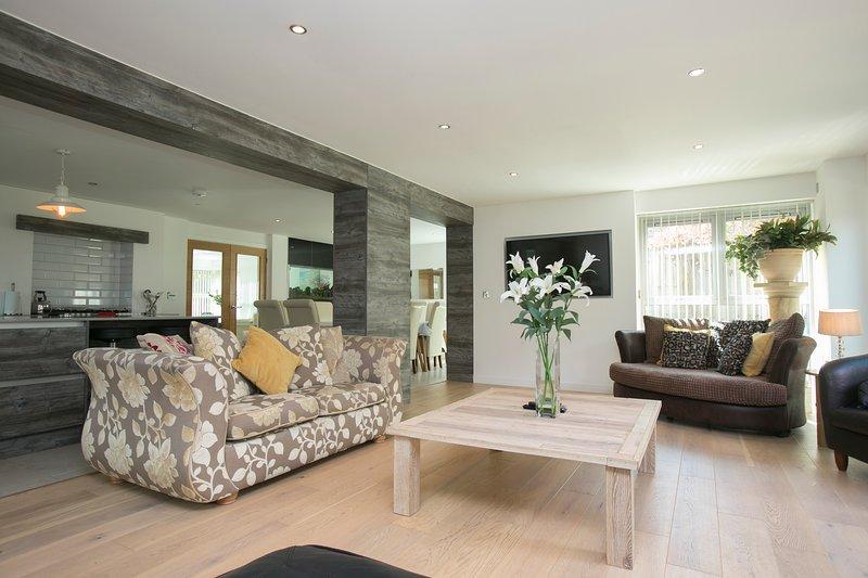 Luxurious Open Plan Living Area