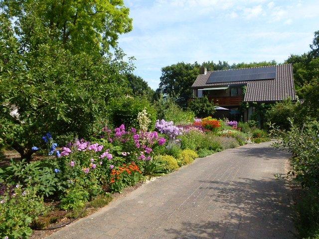 Una vez más, el hermoso jardín de flores.