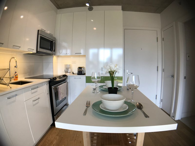 Great location, literally near everything, restos, metro, movies, coffee shops, vacation rental in Westmount