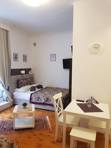 Halkidiki Sea Apartment, holiday rental in Nea Kallikratia