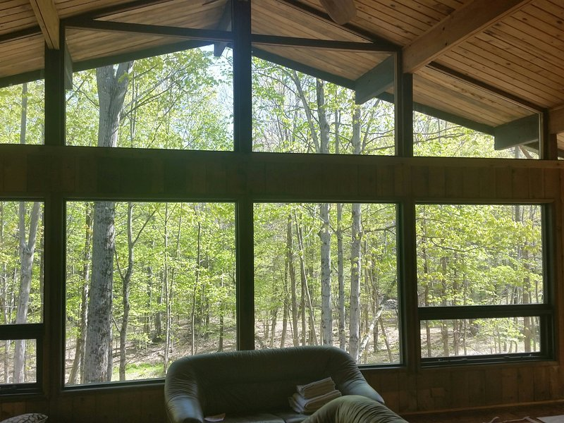 The Lodge at Fox Hollow, vacation rental in Petersburg