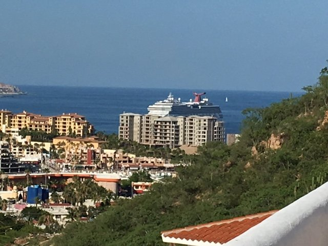 watch the cruise ships come and go every day