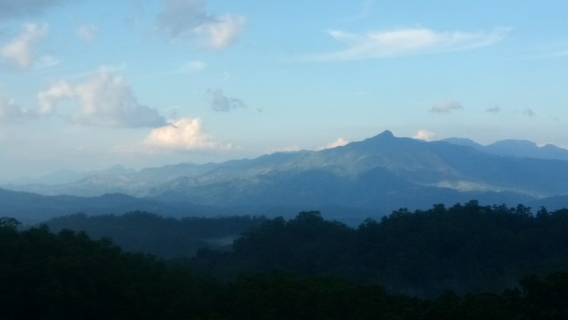 montañas neblinosas