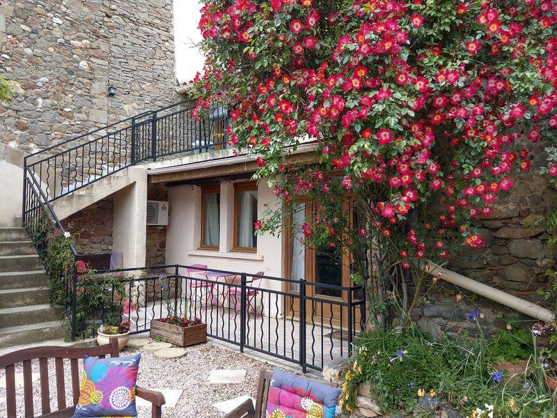 Le Studio, Games room, Wifi, Heated Spa pool, UKTV,  Bar, Village Location, holiday rental in Trausse