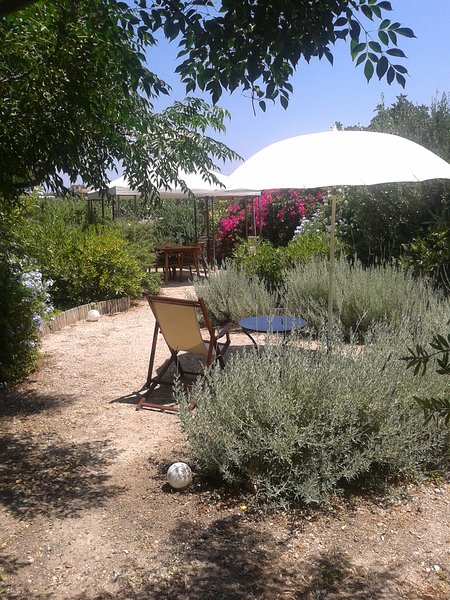 Aegina's Oasis, holiday rental in Aegina Town
