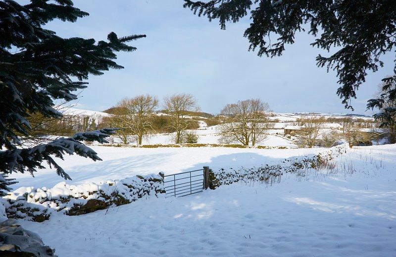 Winter uitzicht vanuit de tuin