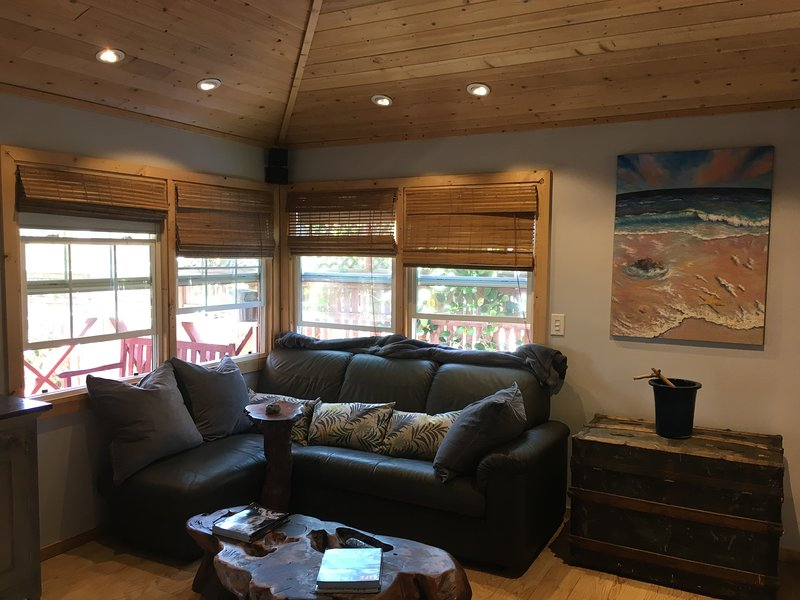 New Leather sofa, massive flat screen, & high Pine ceiling with fan!