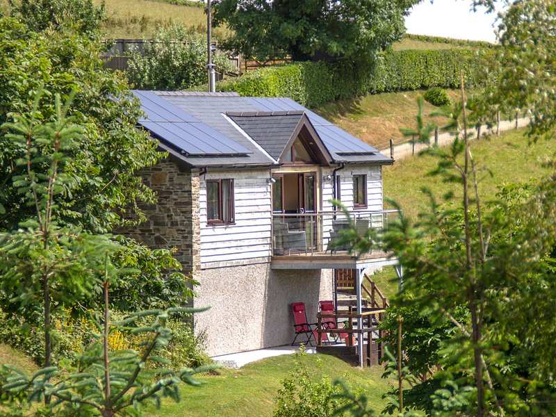 BLACK MOUNTAIN VIEW, luxurious cabin, en-suite, woodburner, parking, in, vacation rental in Llanwrtyd Wells