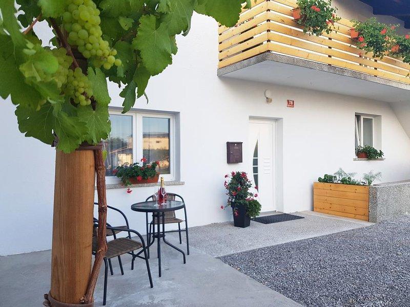 Vinogradniška kmetija Tomažič - Apartment with Garden View, casa vacanza a Crni Vrh