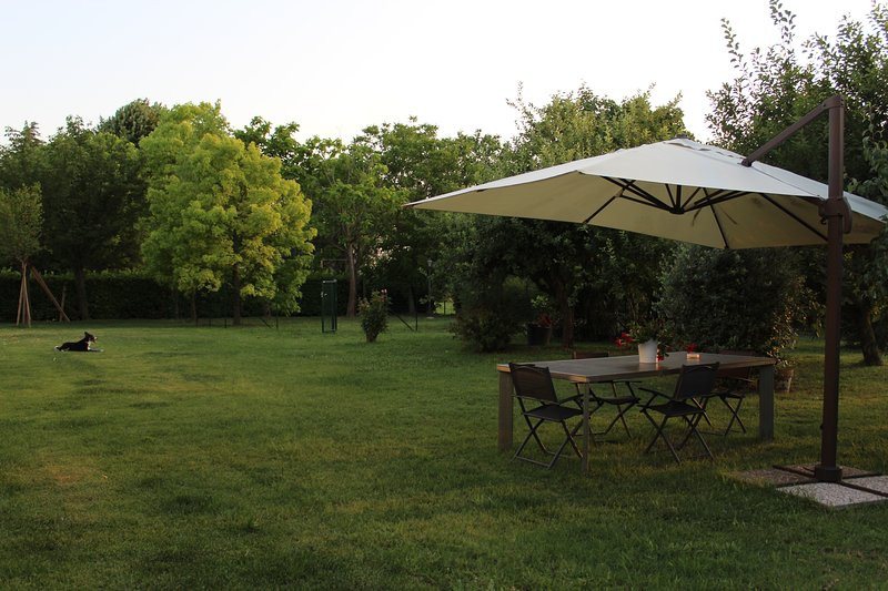 Beautiful flat with garden, holiday rental in Molinella