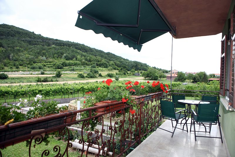 Traditional Wine County Apartment SU1, holiday rental in Crni Kal