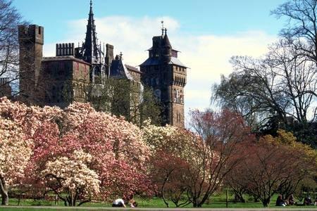 Cardiff Castle , 10 minute walk