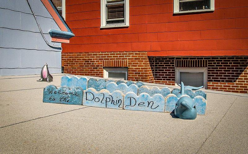 Bienvenue dans notre Dancin 'Dolphin Den!