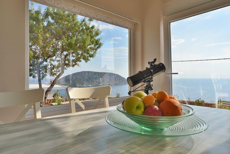 Villa Arsida Sea view, holiday rental in Palaia Fokaia
