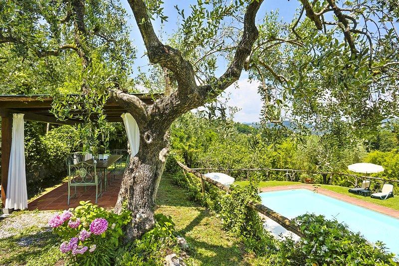 VILLA LA CHIUSA SCHNAUTZER - ORFEO HOUSE, holiday rental in Maggiano
