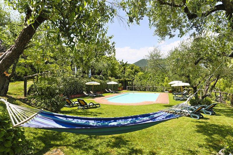 VILLA LA CHIUSA SCHNAUTZER - CASTORE&POLLUCE, holiday rental in Maggiano