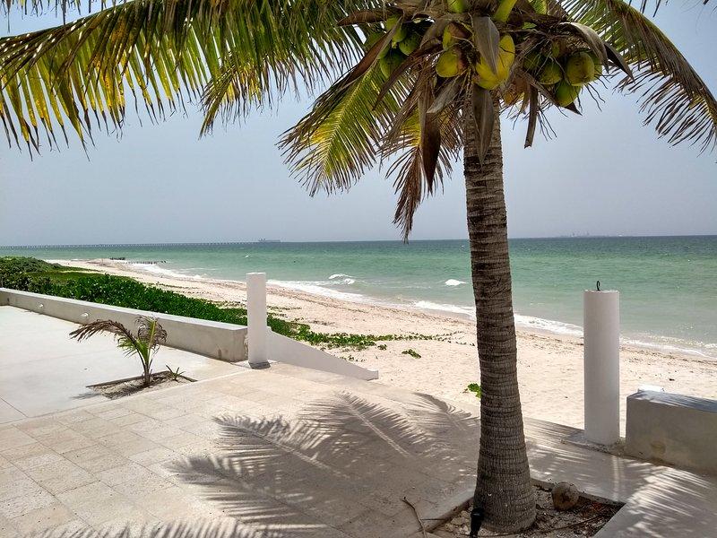Royal Beach V Frontbeach Yucatán, location de vacances à Progreso