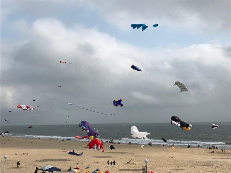 Kites next door