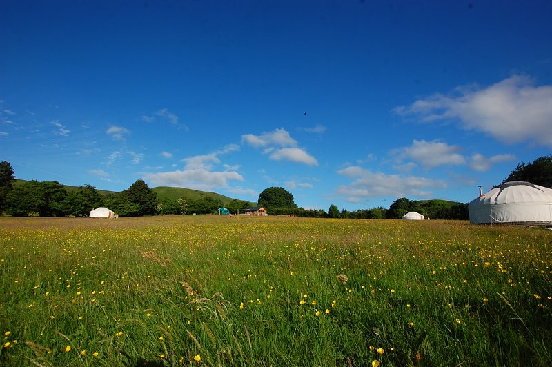 Valley Yurts Glamping Mid Wales, vacation rental in Brilley