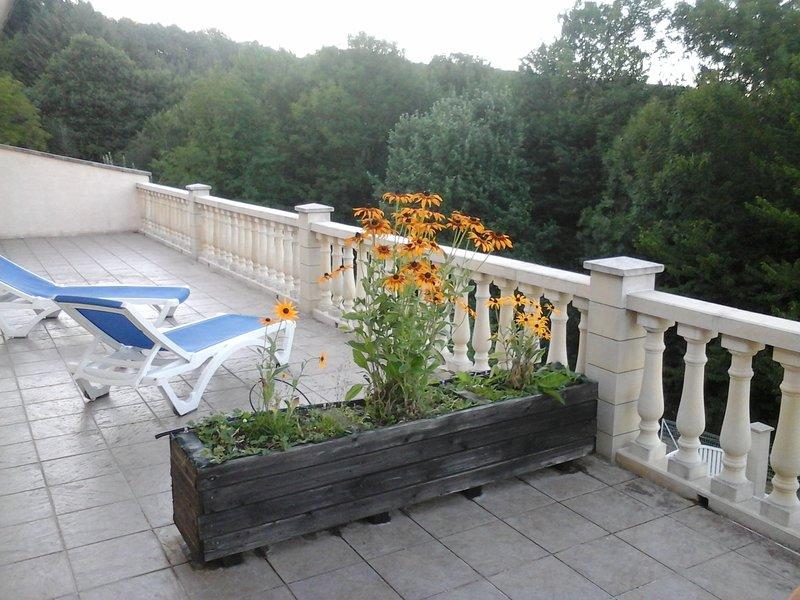 Amazing house with mountain view, location de vacances à Saint-Sever-du-Moustier