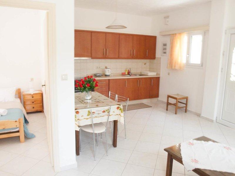 Joanna Company Apt 4, holiday rental in Kokkini Hani
