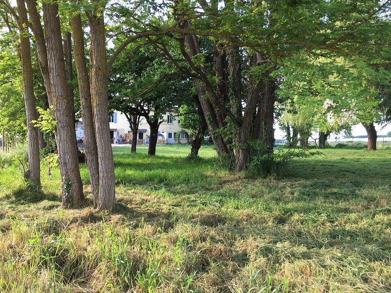 Gite de grand Jean - Vacances au calme dans un endroit champêtre, vacation rental in Meilhan-sur-Garonne