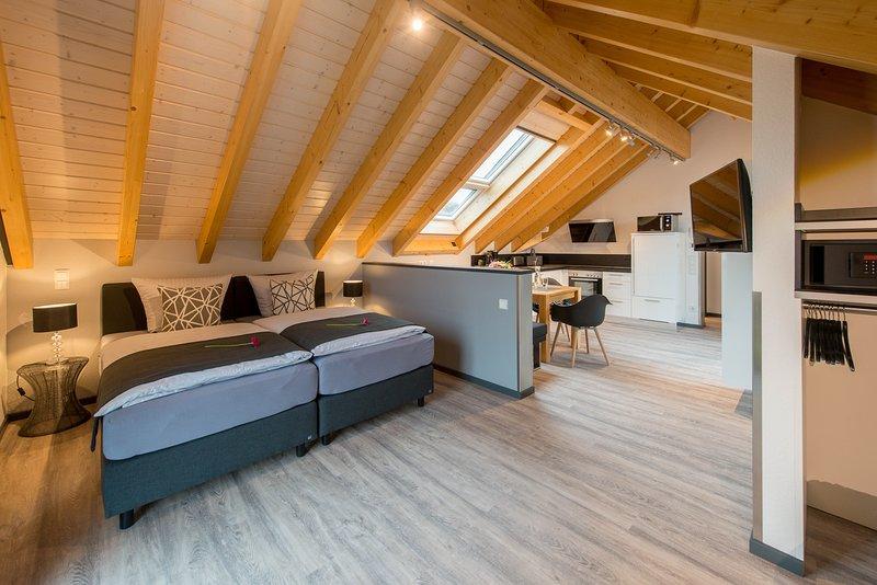 Luxus-Dachloft - Premium-Ferienwohnung für 2 Erwachsene + 2 Kinder in Bensheim, vacation rental in Gernsheim