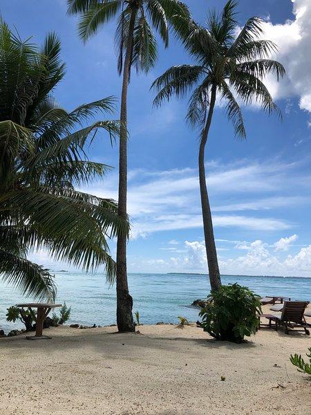 MON PETIT COIN DE PARADIS 4KM DE LA MER DES CARAIBES, location de vacances à Fort-de-France