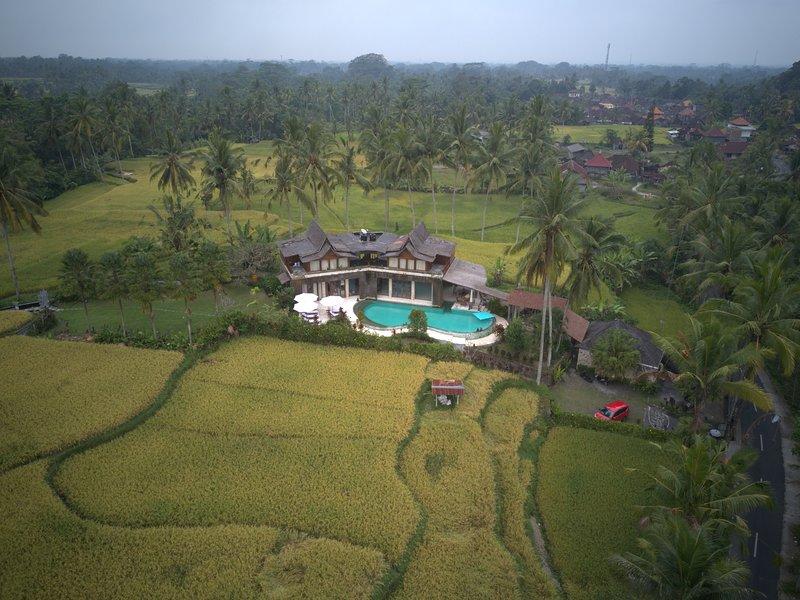 Photo aérienne de Alise Villa entourée de rizières