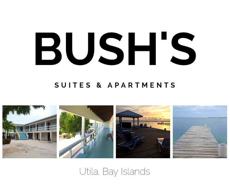 Bush's 'Lionfish' Single Suite, casa vacanza a Utila